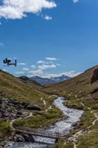 Alaska: Savage River Trail