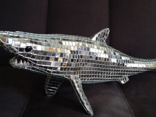 Disco Shark update