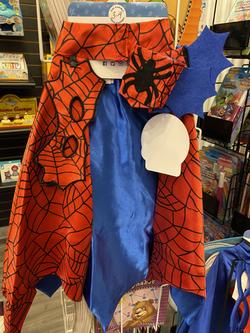 DRESS UP SPIDER MAN