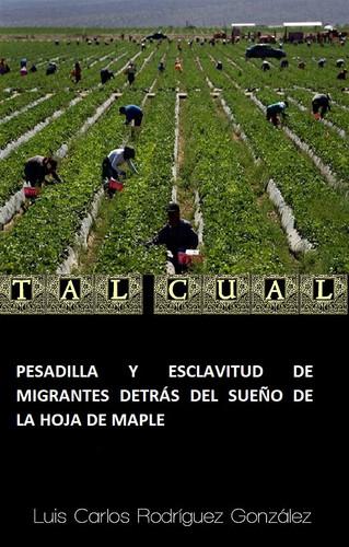 PESADILLA Y ESCLAVITUD DE MIGRANTES DETRÁS DEL SUEÑO DE LA HOJA DE MAPLE