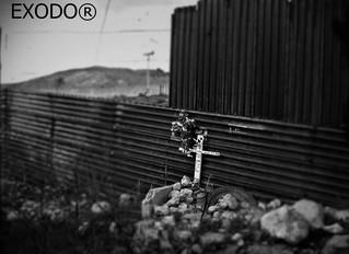NOS TRATAN COMO ANIMALES: MEXICANOS DEPORTADOS DE ESTADOS UNIDOS