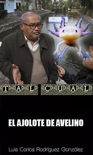 EL AJOLOTE DE AVELINO