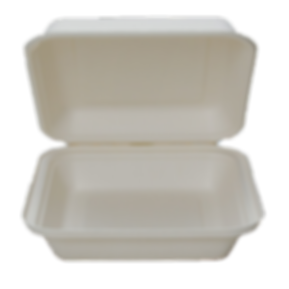 takeout box 2.png