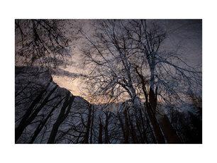 L'hiver au matin #03