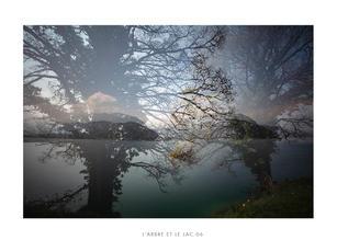 L'arbre et le lac 06