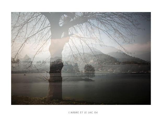 L'arbre et le lac 04