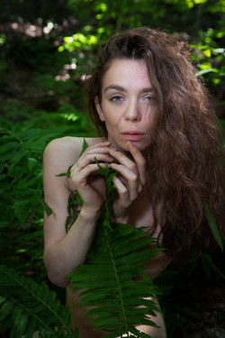 CFrenette-Jay_Ban-en_forêt-11
