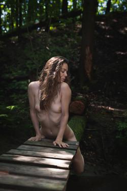 CFrenette-Jay_Ban-en_forêt-5
