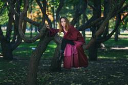 Dans les arbres