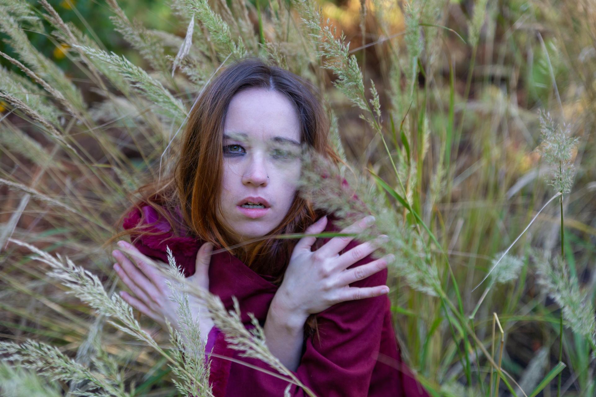 Dans les hautes herbes