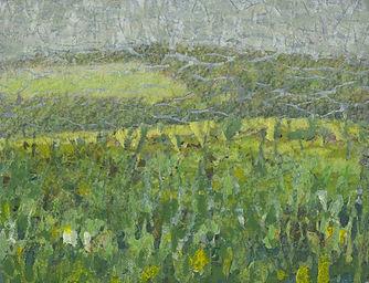monaghan fields.jpg