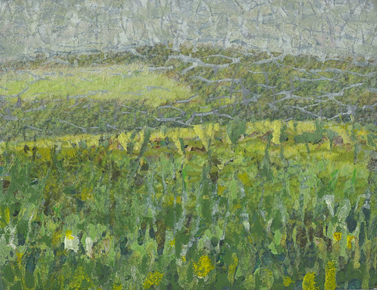 Monaghan Fields by Miles Lowry