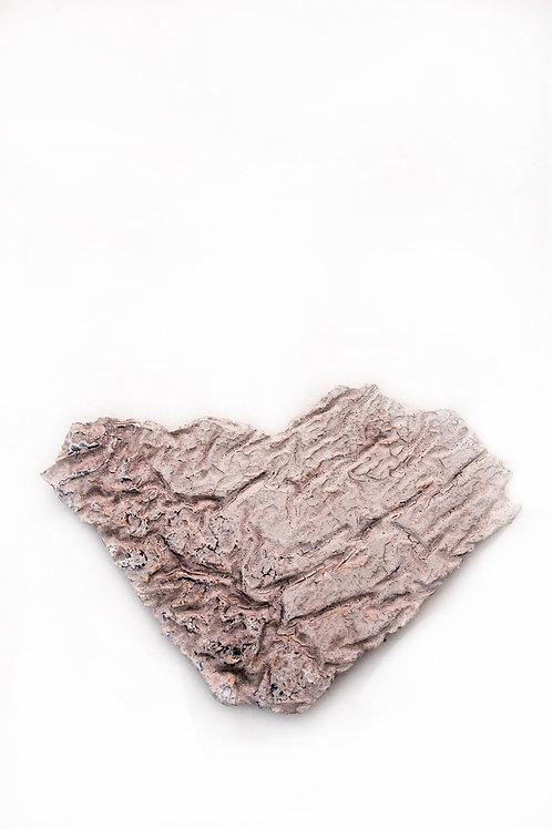 Ancient Heart by David Ferguson