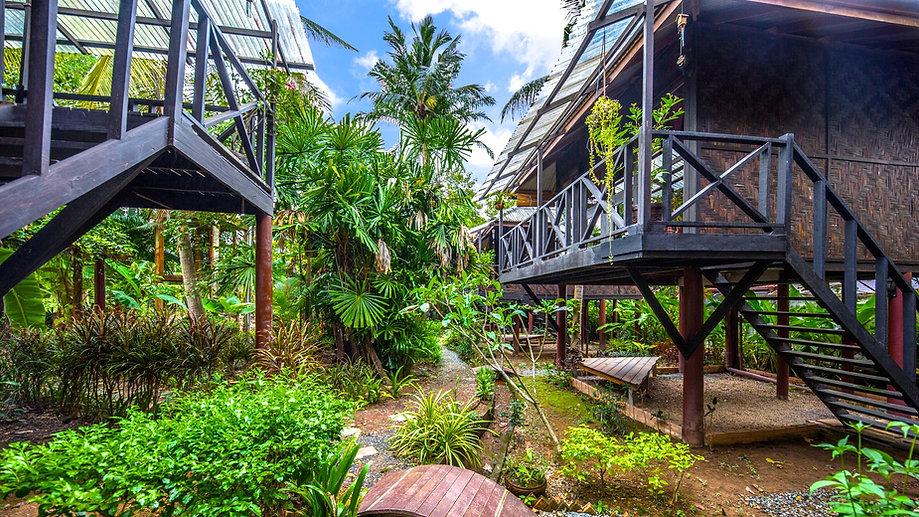 Tropical Gardens surrounding the bungalows at Fruit Tree Lodge. Koh Lanta. Thailand