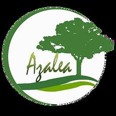 Modelo Azalea Condominio Brisas del Bosque Cipreses