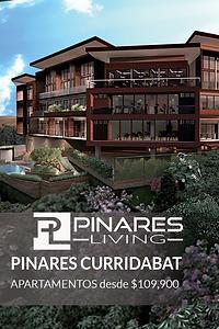icono web pinares.png