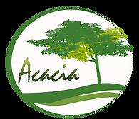 Modelo Acacia