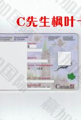 20200204 CHOW WAIMING 枫叶卡!.jpg