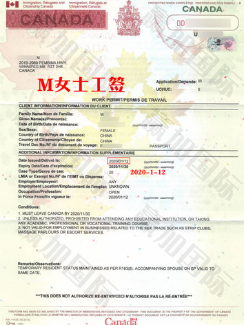 20200112 MA QINGHUI WP!.jpg
