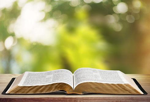 Book, Bible, Open..jpg