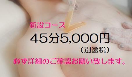 45分VIOその他OK(新設コース)