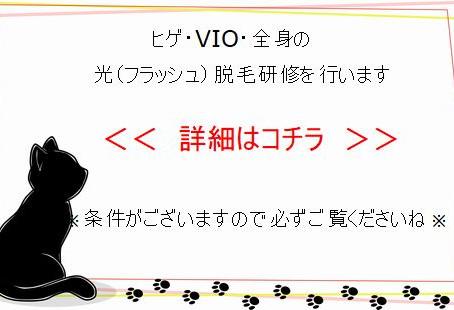 【光脱毛スタッフ研修】ヒゲ・VIO・全身※要条件あり