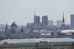 Cathédrale Notre-Dame de Paris (75)