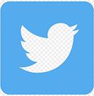 format-twitter-logo-transparent-11549680