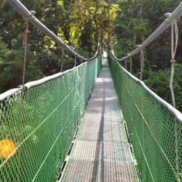 Hanging Bridges and Chocolate Tour