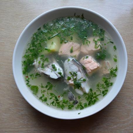 Fischsuppe / Ucha