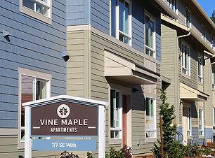 Vine Maple - 2017.jpg
