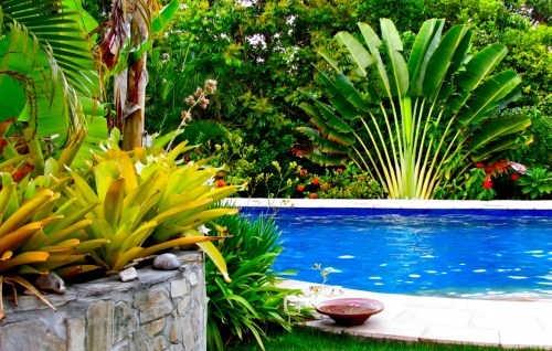 pousada mangabeiras boipeba piscina e jardim.jpg