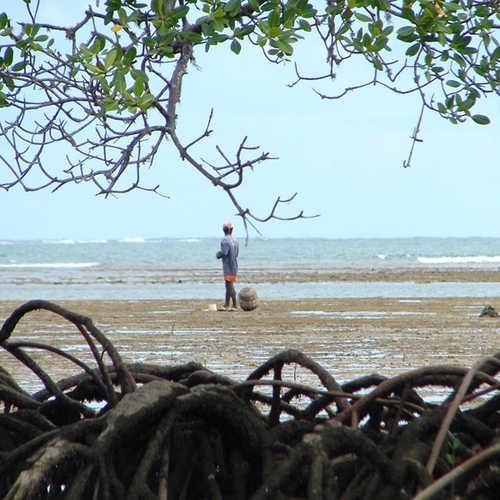 ilha-de-boipeba-ponta-dos-castelhanos-2.jpg