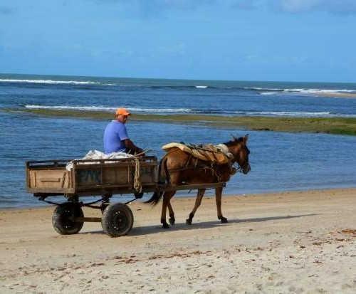 Carroça na Ilha de Boipeba.jpg