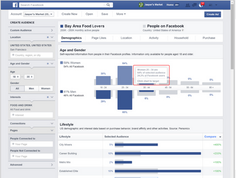 Facebook's Audience Insights is a Key Marketing Solution