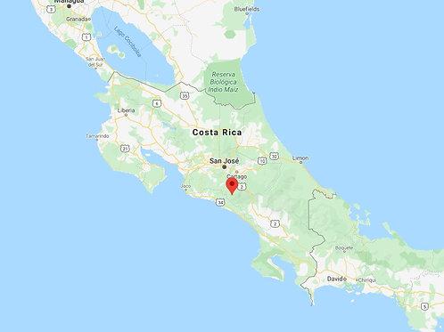 Costa Rica - Dota - Hermosa
