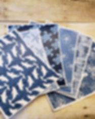 Kiwi Lane Papers Under The Sea Crop.jpg