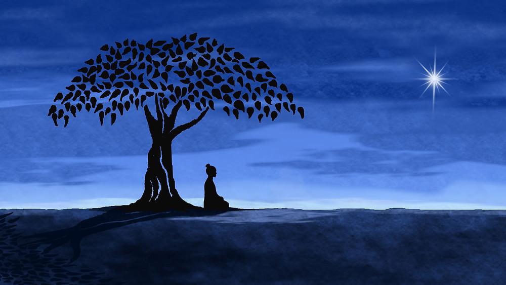 Buddha, mind, body, finances, relationships, holistic life coaching, sweat nation,