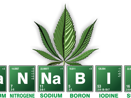 What Are The benefits & Harm of Cannabis?