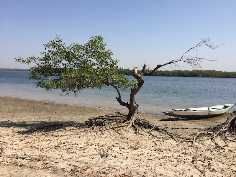 Sippo Island, Toubakouta, Senegal