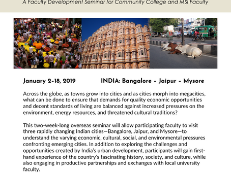 Exploring Urban Sustainability through India's Cities: Community College Faculty Development Sem