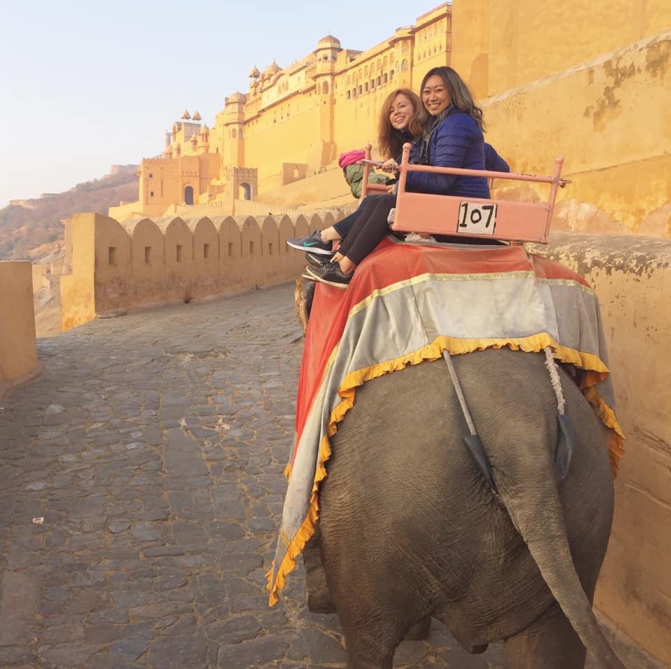 Janny Li CAORC AIIS elephant