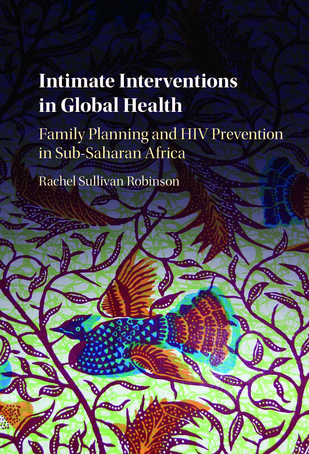 Intimate Interventions in Global Health Rachel Robinson book cover