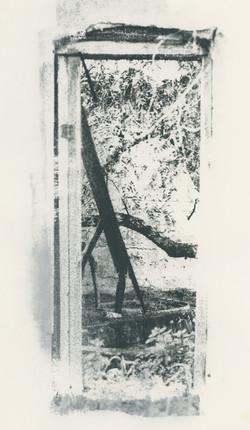 the doorway to nature