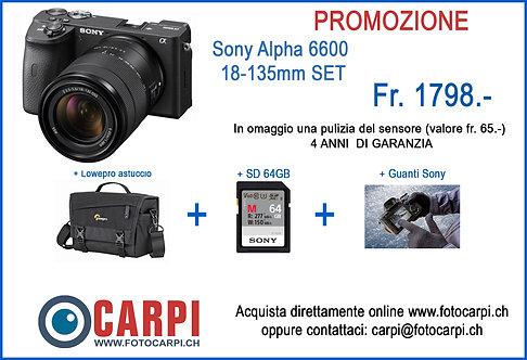Sony Alpha A6600 + 18-135mm F/3.5-5.6