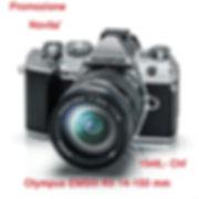 a.Em5.jpg