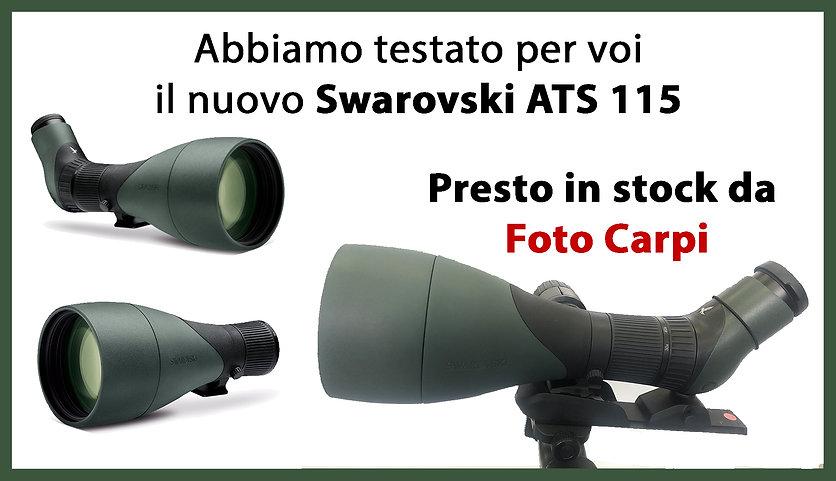 SWAROVSKI 115.jpg