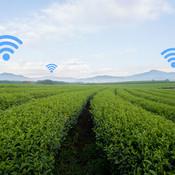 smart-agriculture0724-620x354-620x330.jp