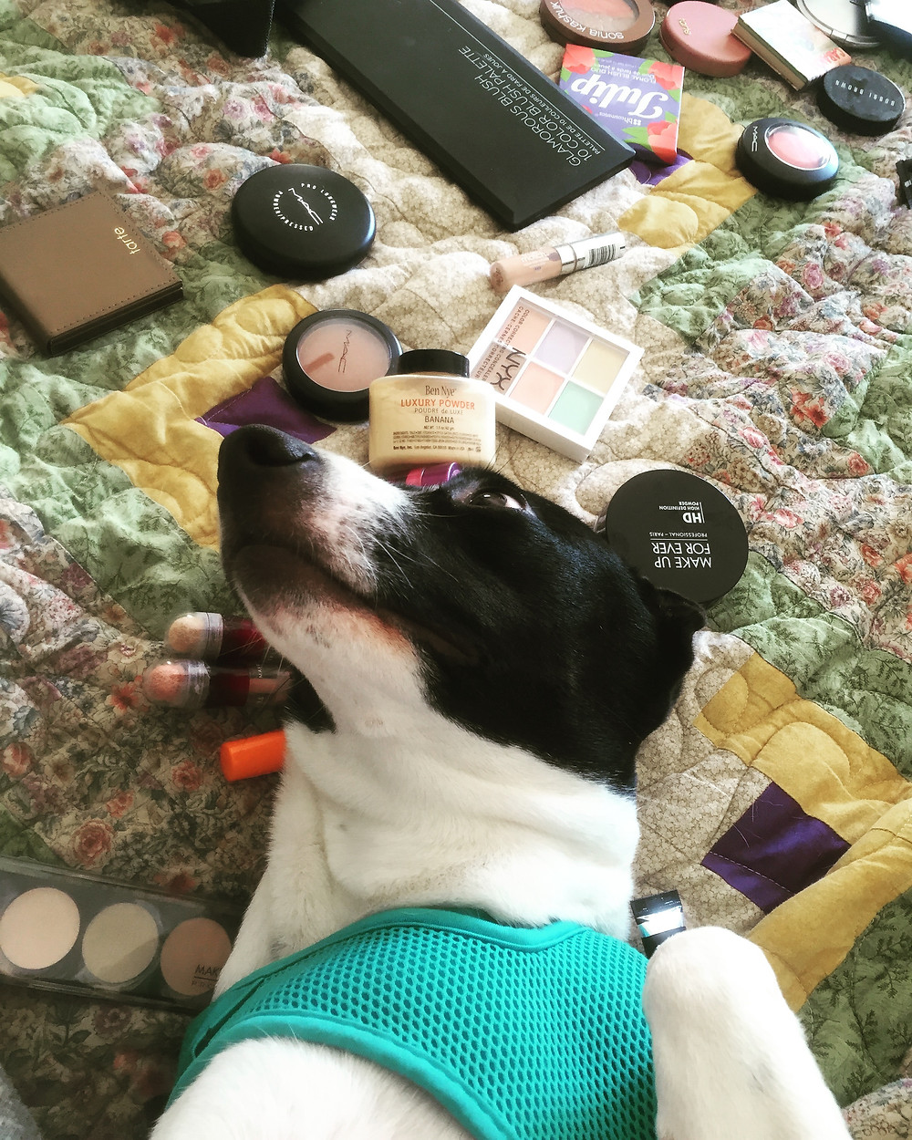 contour how to full coverage makeup how to everyday makeup look smokey eye look highlight foundation brows brow wiz youthful how to makeup tutorials