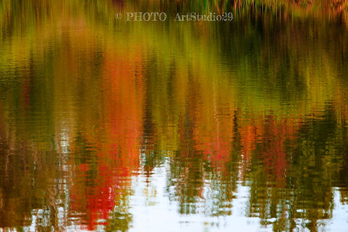 Abstract photography with reflections of trees in the water in Autumn - photo ArtStudio29